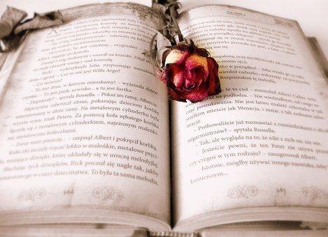 book-419589__3401